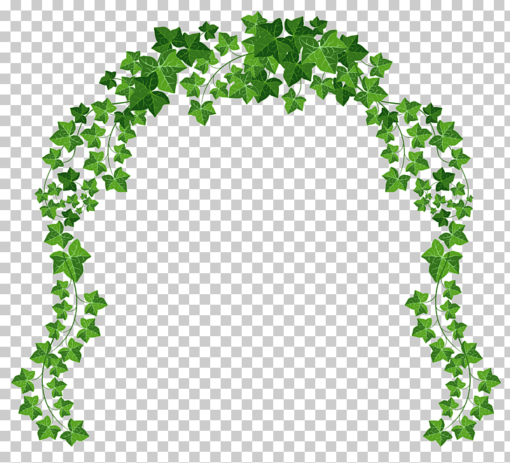 Arch , Vine Arch , animated green vines border PNG clipart.