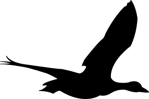 Free Bird Animation, Download Free Clip Art, Free Clip Art.