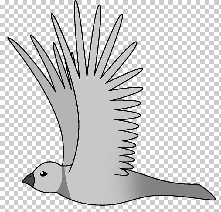 Bird flight Bird flight Animation, flying bird PNG clipart.