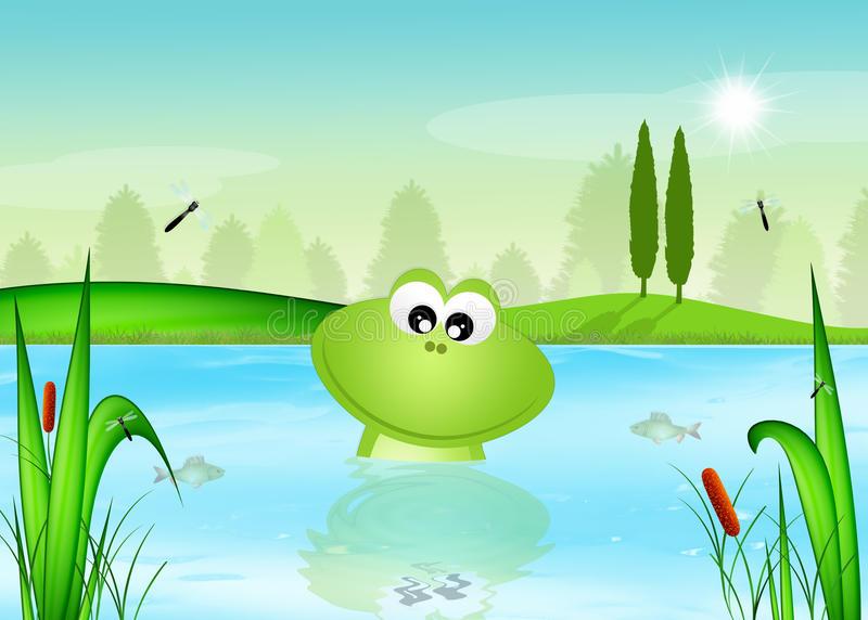 Frog Pond Stock Illustrations.