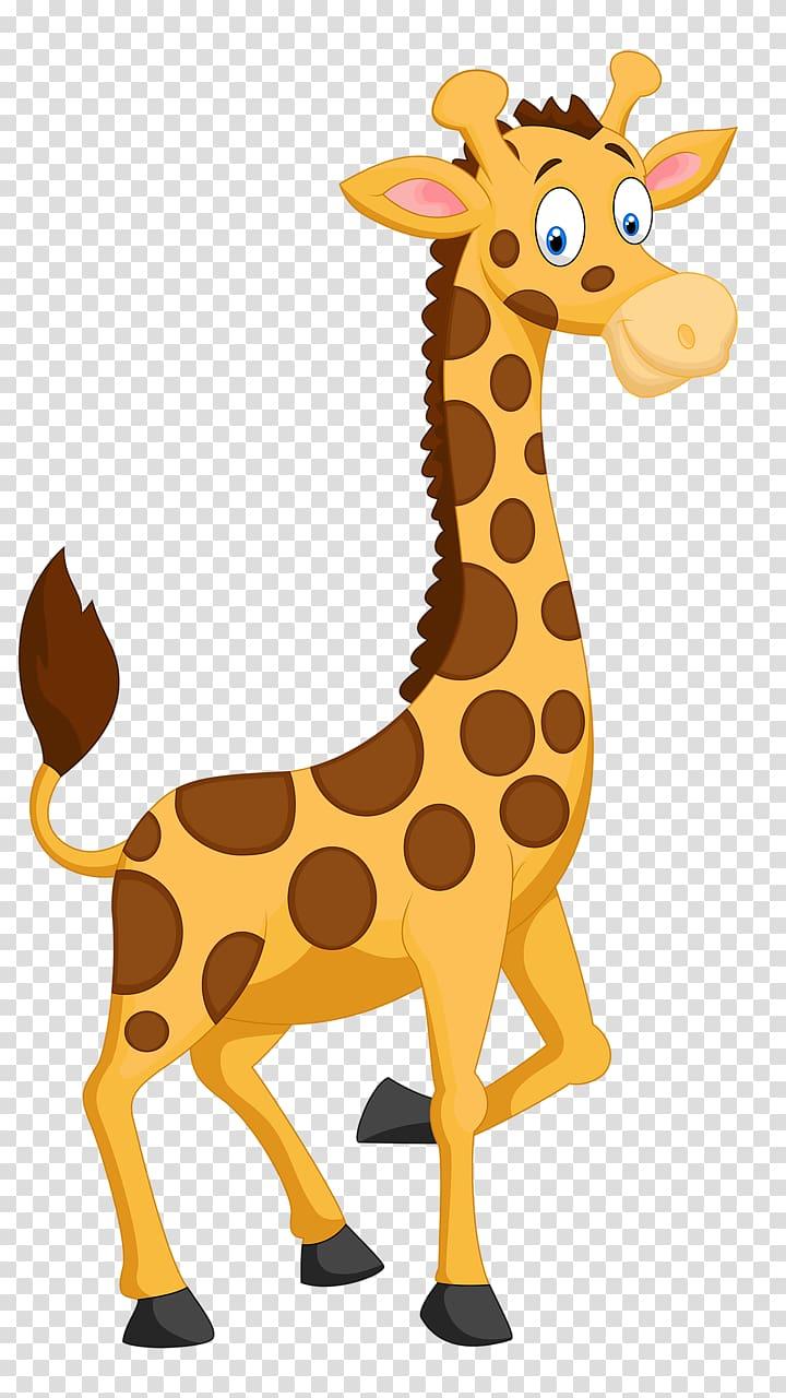 Giraffe , Funny giraffe transparent background PNG clipart.
