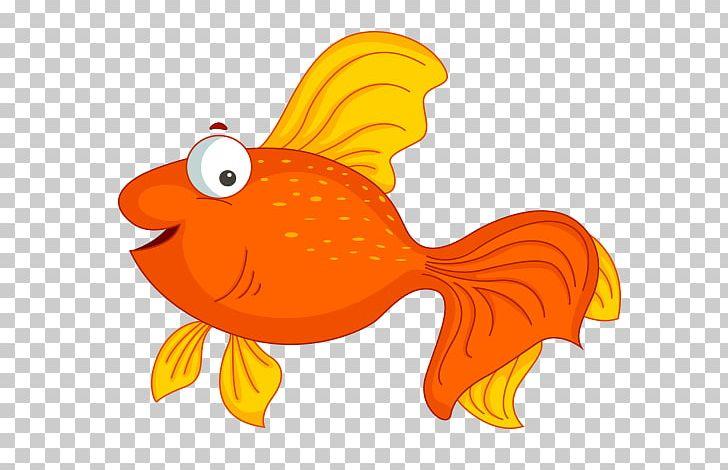 Goldfish Cartoon PNG, Clipart, Animaatio, Animal, Animated.