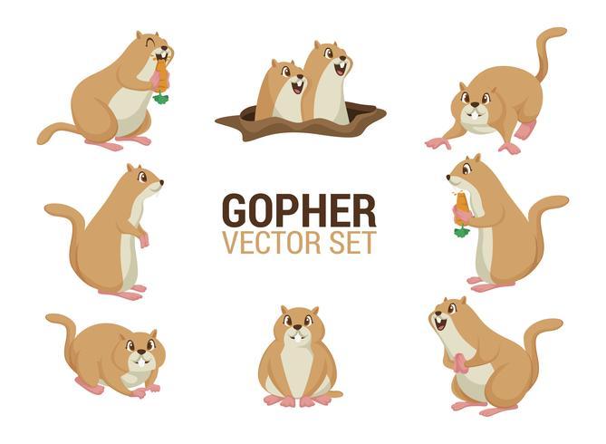Gopher Cartoons Vector.