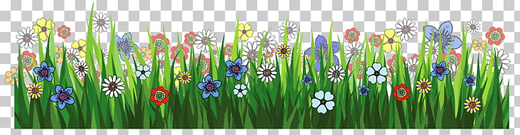 Grasses Flower , Animated Grass s PNG clipart.