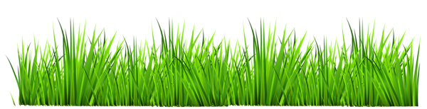 Free Animated Grass Cliparts, Download Free Clip Art, Free.