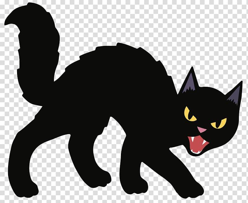 Black cat Kitten Halloween , cats transparent background PNG.