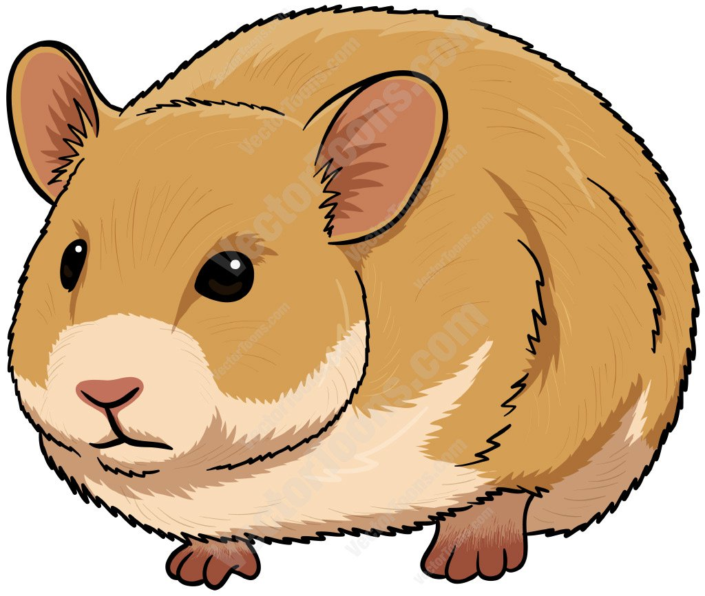 794 Hamster free clipart.