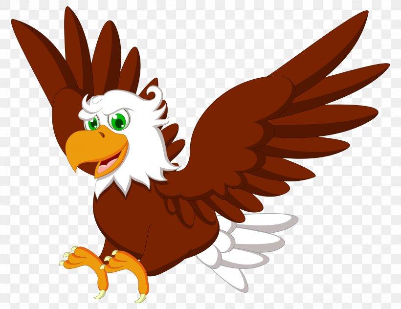 Bald Eagle Hawk Clip Art Cartoon Drawing, PNG, 4656x3594px.