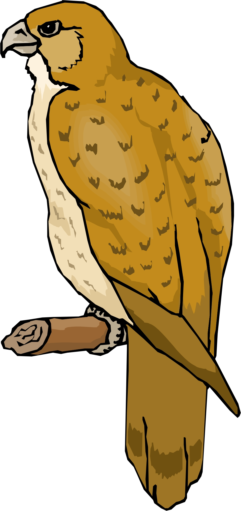 Free Cute Hawk Cliparts, Download Free Clip Art, Free Clip.