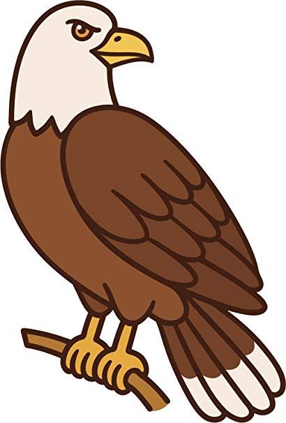 Hawk clipart simple cartoon, Hawk simple cartoon Transparent.