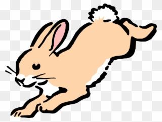 Cartoon Bunny Hops Image.