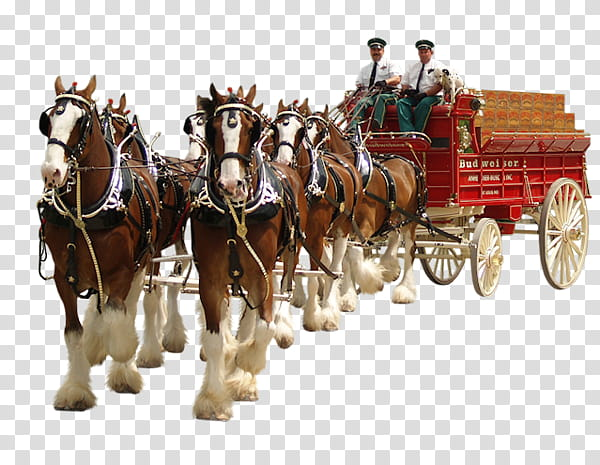 Painting Cartoon, Horse, Animation, Carriage, Chariot, Wagon.