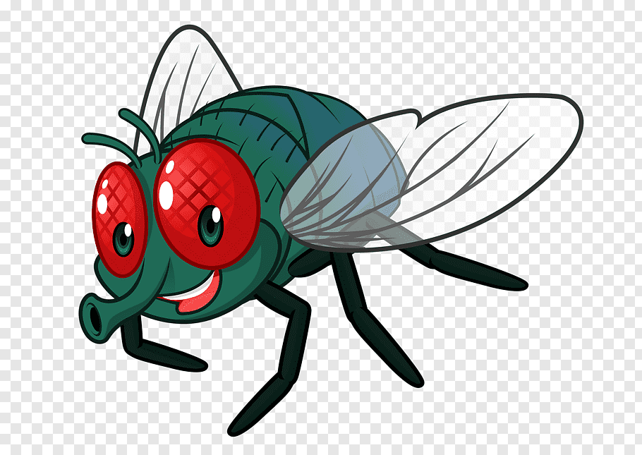 Green and red fly illustration, Cartoon Fly, Cute little.