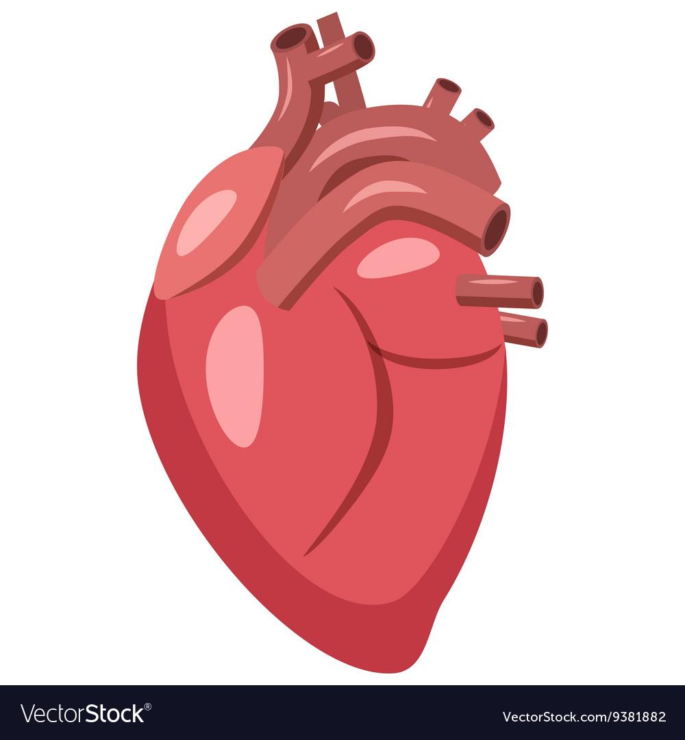 Human heart icon cartoon style.