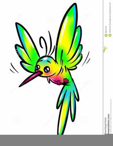 Animated Hummingbird Clipart.