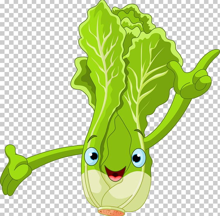 Lettuce Cartoon PNG, Clipart, Animation, Cabbage, Chinese.