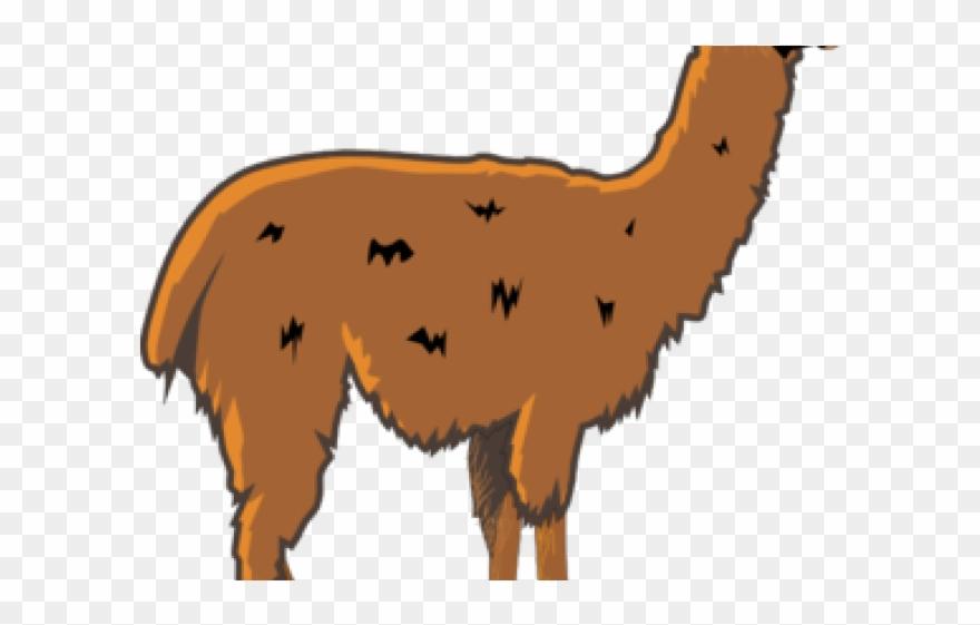 Llama Clipart Animated.
