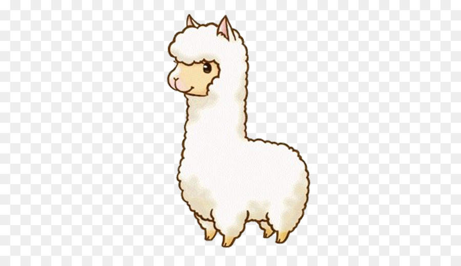 Llama Cartoon clipart.