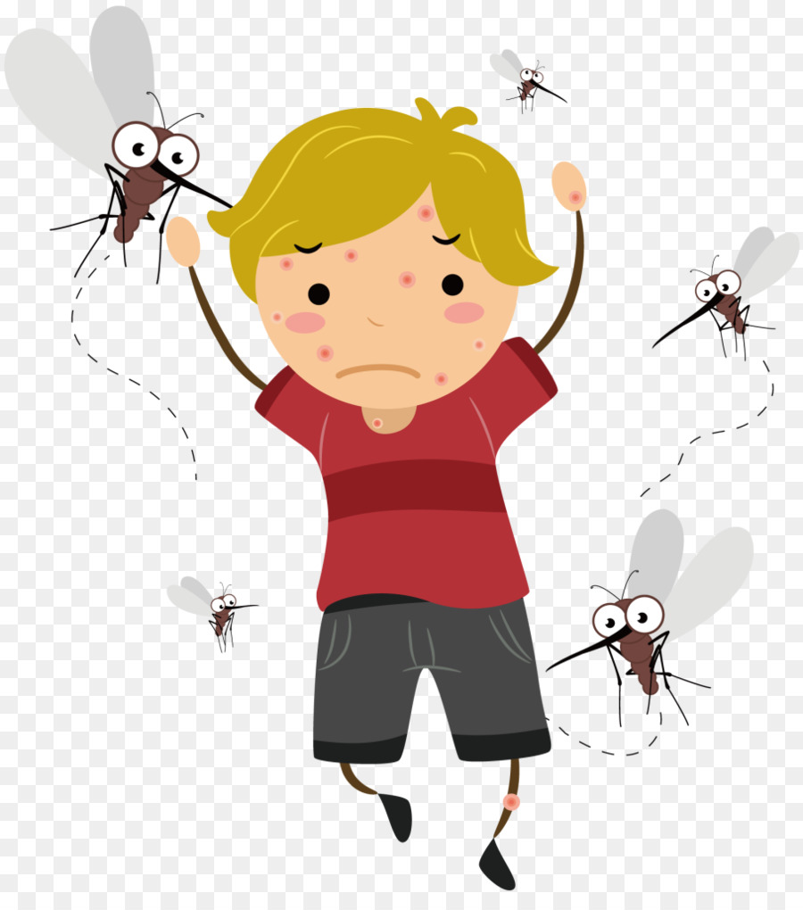 Mosquito Cartoon png download.