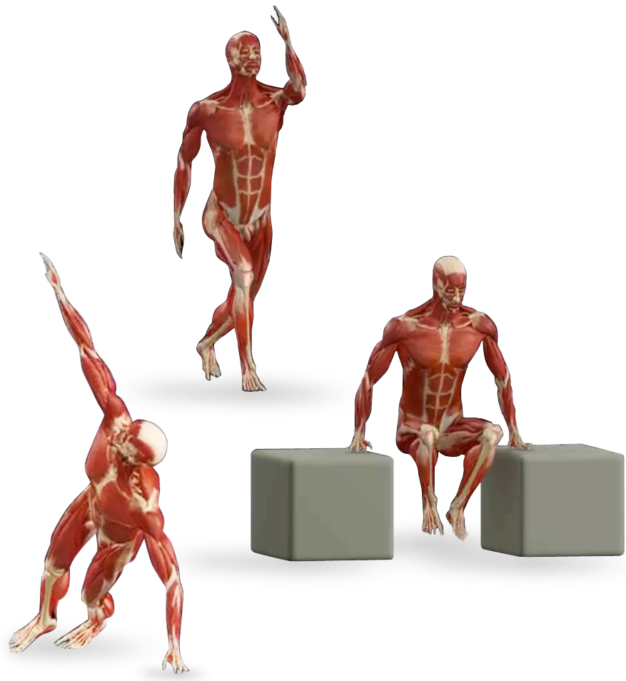 Moving clipart exercise, Moving exercise Transparent FREE.