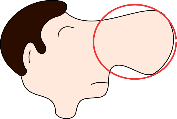 Free Nose Cliparts, Download Free Clip Art, Free Clip Art on.