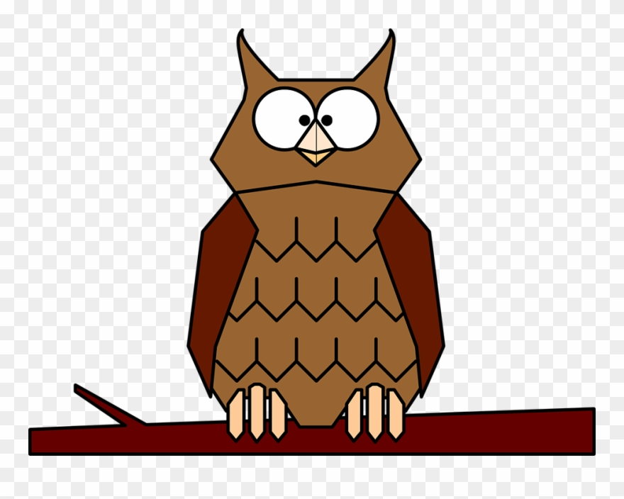 Animated Owls.