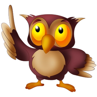 Owl Images.