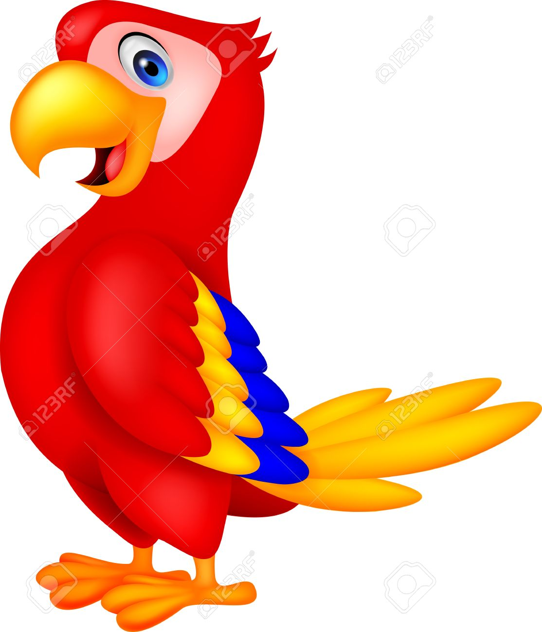 Cute parrot bird cartoon.