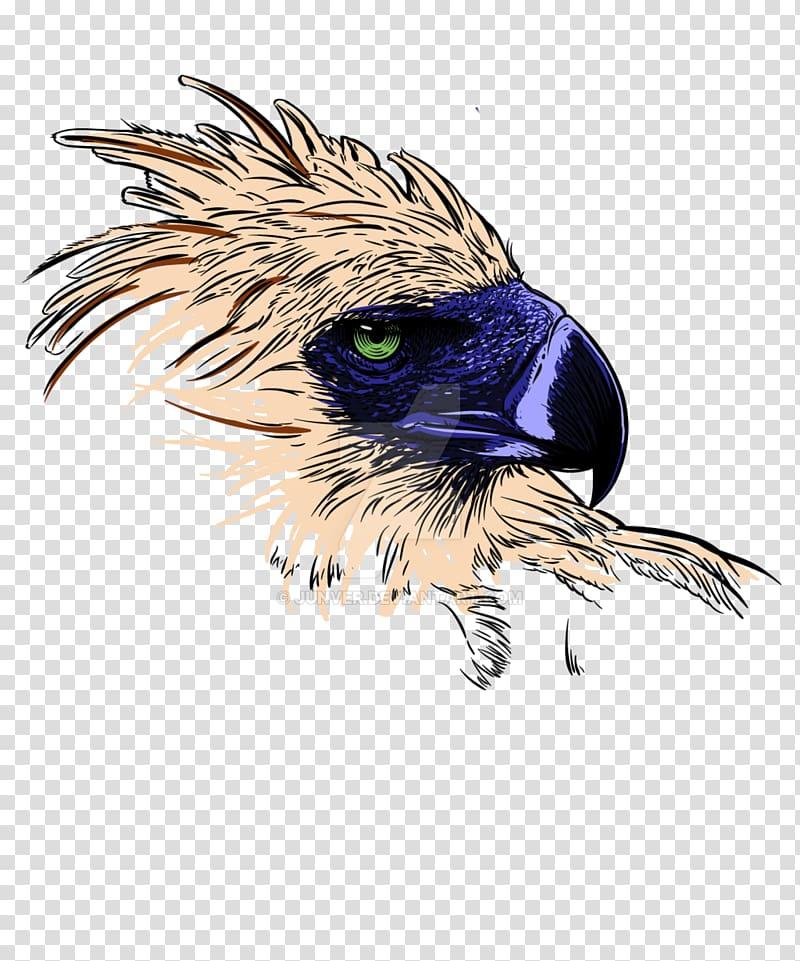 Philippine Eagle Philippines Bald Eagle , eagle transparent.