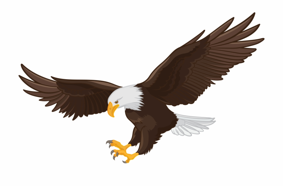 Cartoon Eagle Png, Transparent PNG, png collections at dlf.pt.