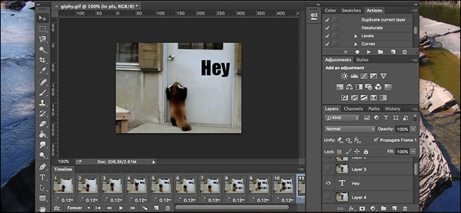 How to Overlay Text (or Anything Else) Over Animated GIFs in Photoshop.