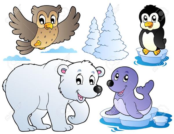 Cartoon Polar Bears Clipart.