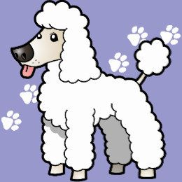 Pin on WHITE POODLE Clipart.