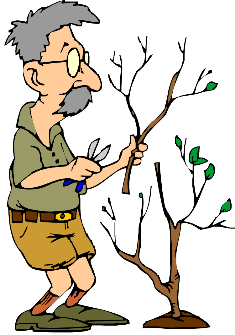 Free Pruning Cliparts, Download Free Clip Art, Free Clip Art.