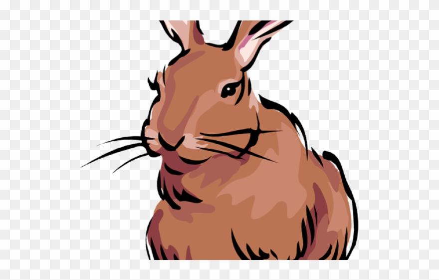 Rabbit Clipart Banner.