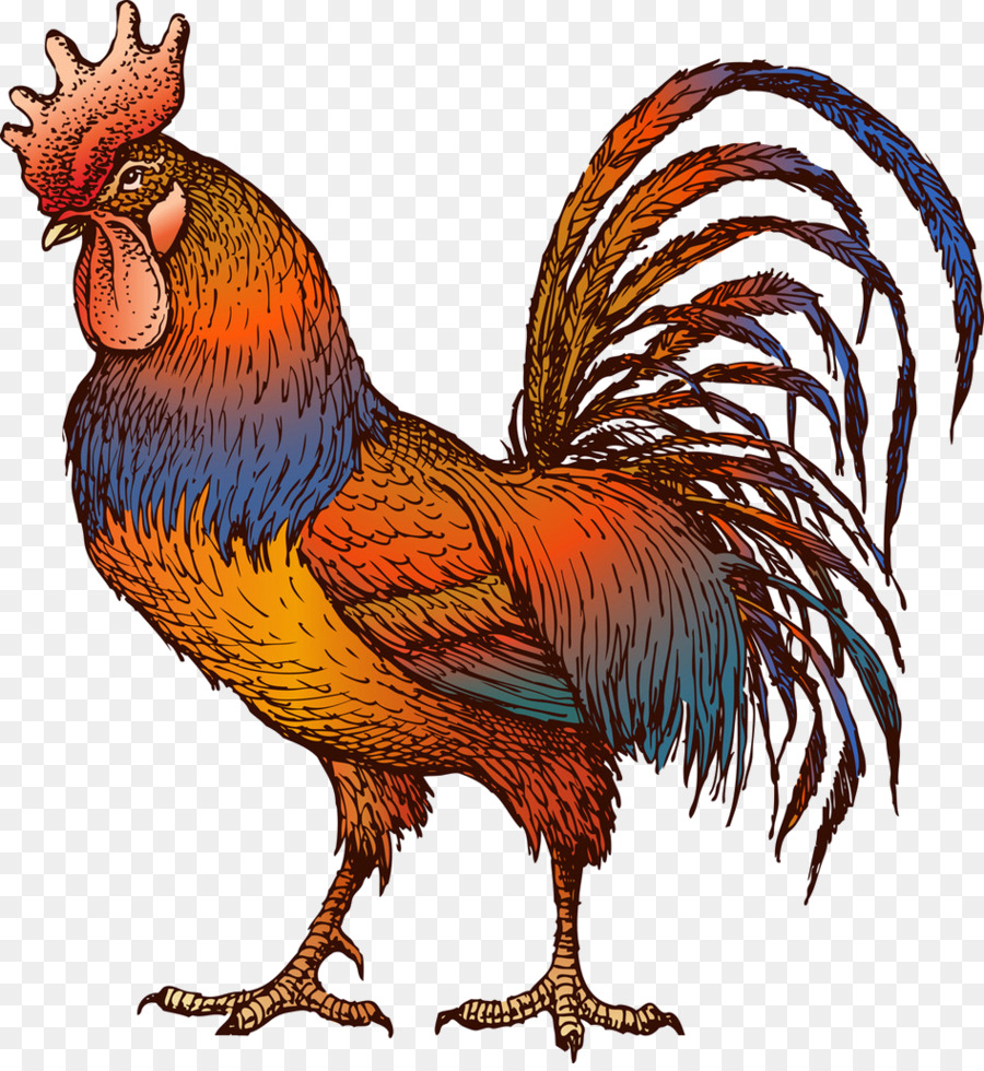 Barbecue chicken Hen Rooster Clip art.
