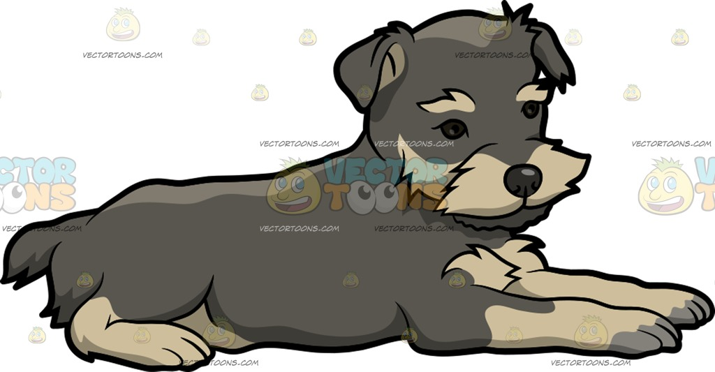 The best free Schnauzer clipart images. Download from 24.