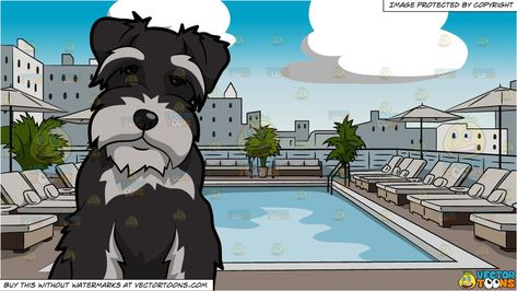 clipart #cartoon An Intrigued Miniature Schnauzer Dog and.