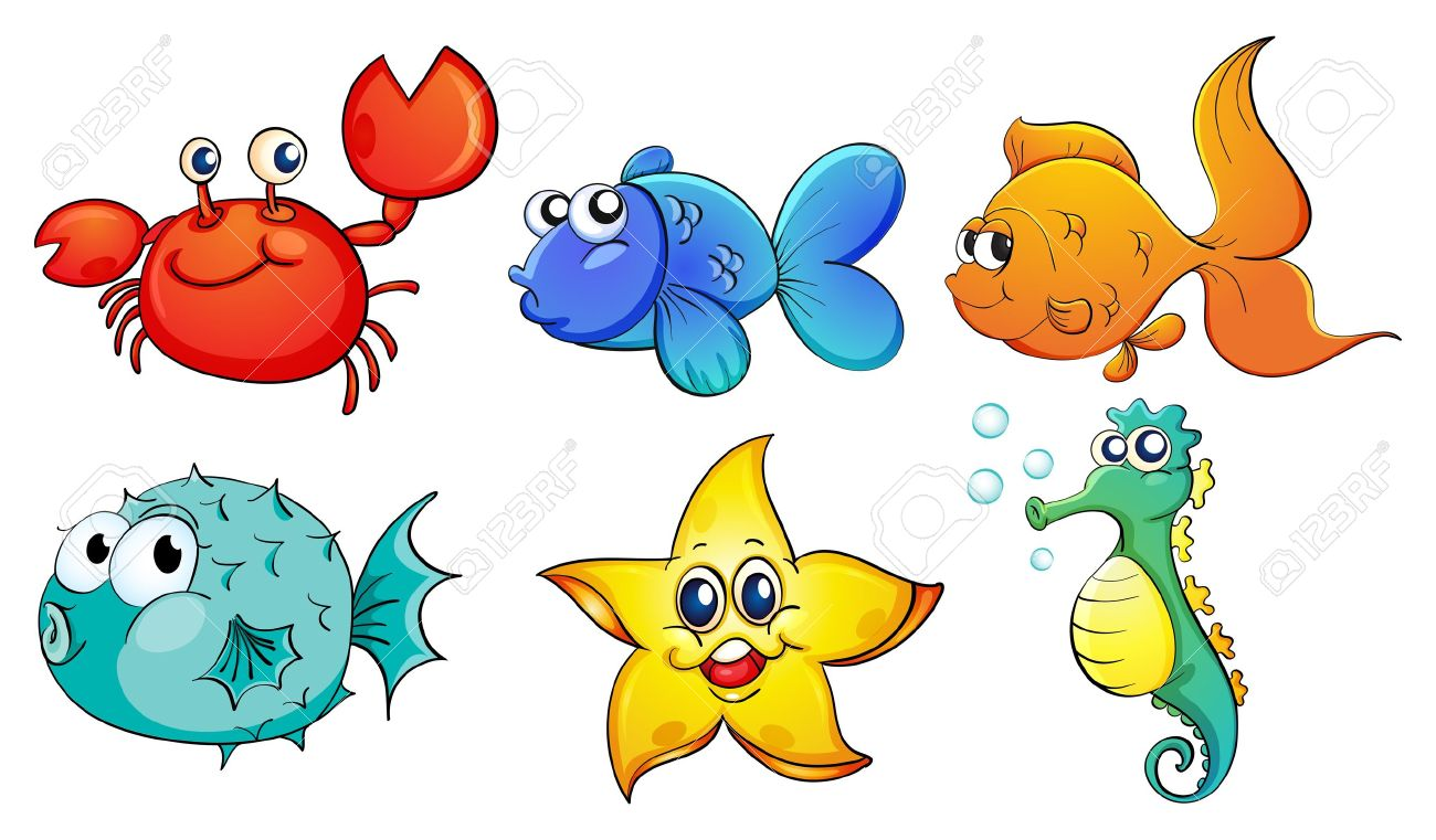 Illustration of the different sea creatures on a white background.
