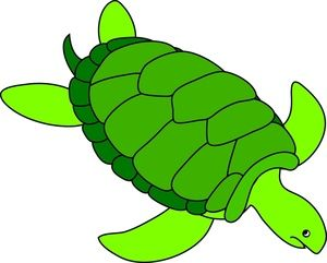Animated Turtle Clipart.
