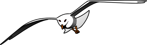 Seagull Clip Art at Clker.com.