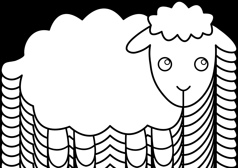 Cartoon Sheep Drawing.