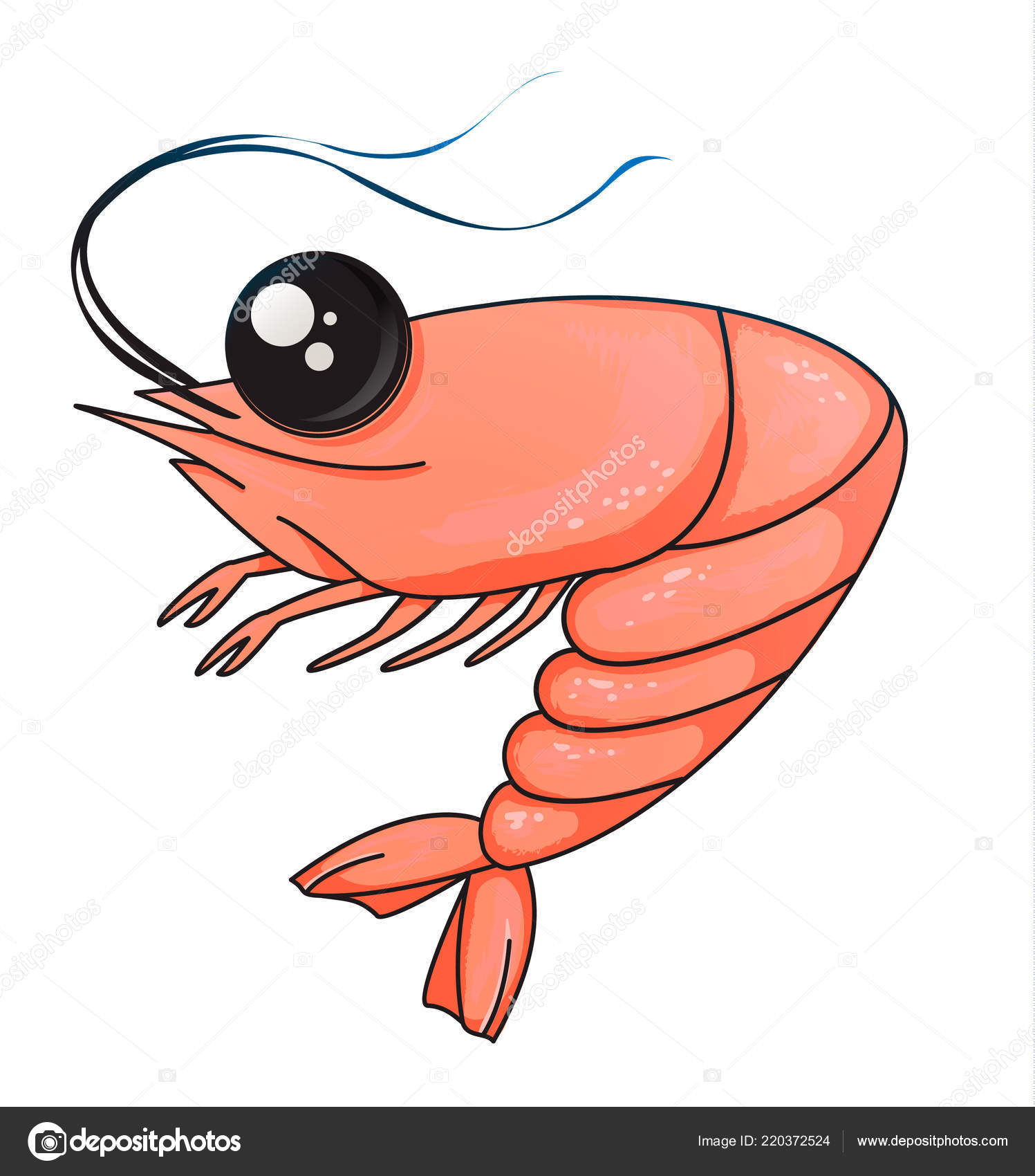 Cartoon shrimp on a white background. character for the menu. Vector.