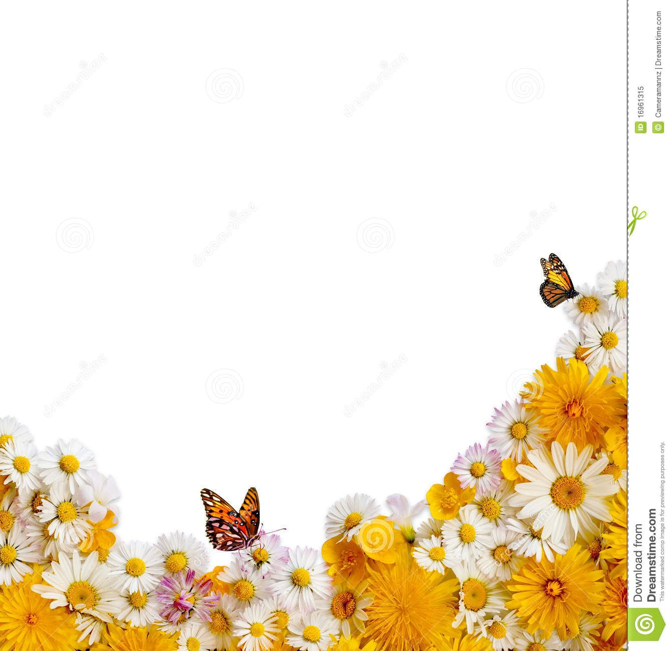Spring Flowers Clip Art Borders.