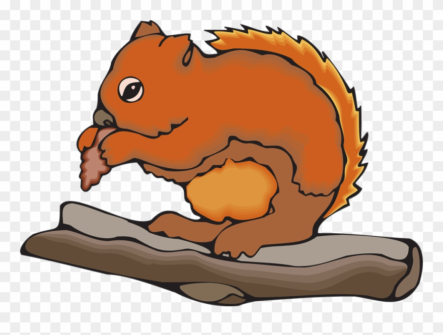 Animated Squirrel Clipart 8, Buy Clip Art.