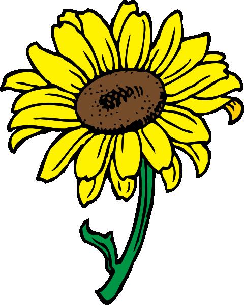 Sunflower Clip Art at Clker.com.