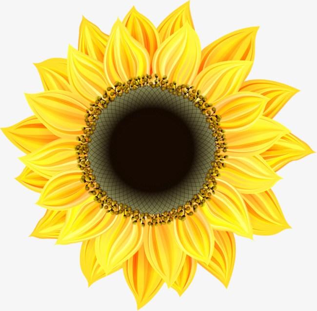 Animated sunflower clipart » Clipart Portal.