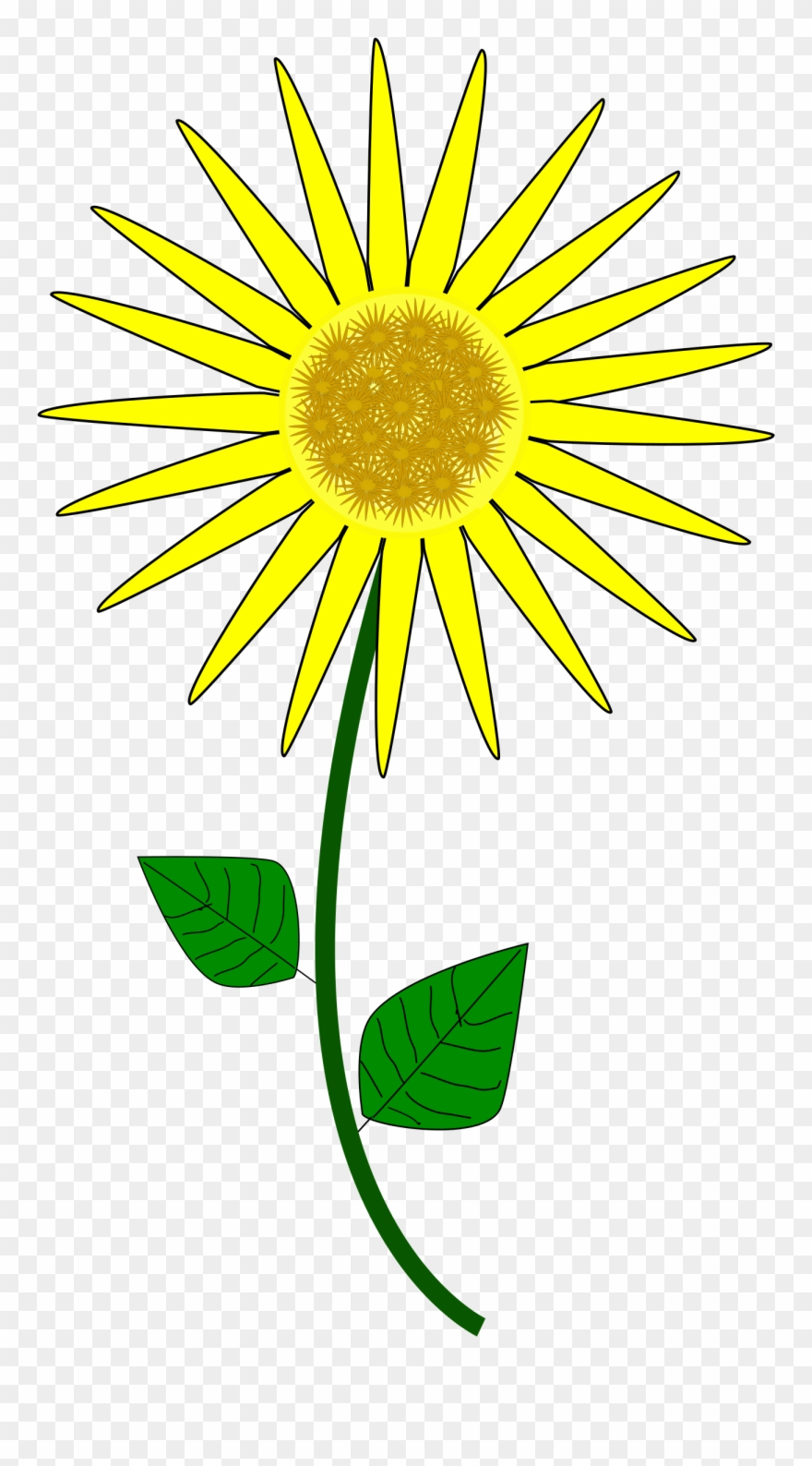 Sunflower Clip Art Free Clipart To Use Resource.