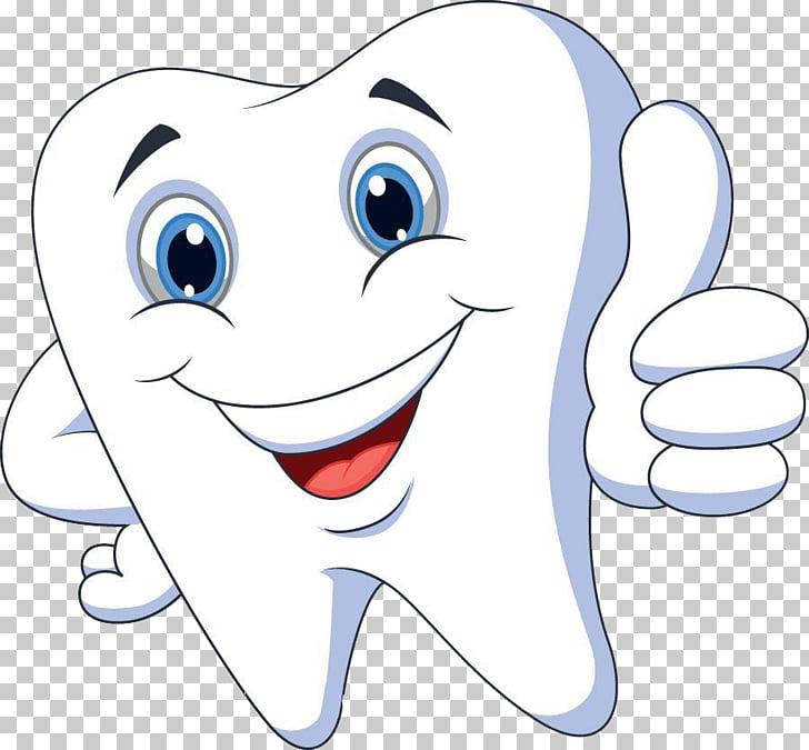 Cartoon Tooth pathology , Healthy teeth, white tooth.