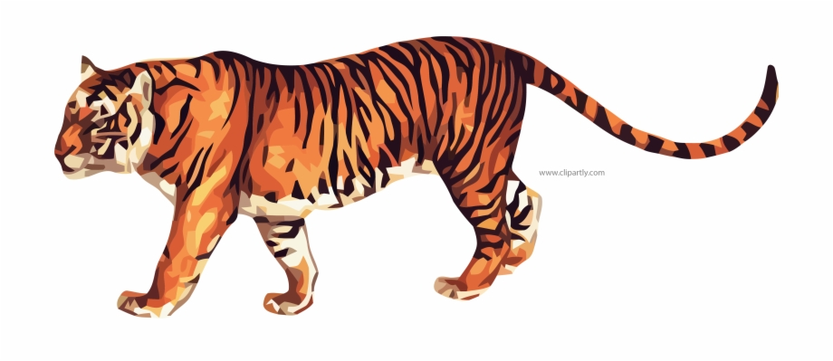 True Tiger Clipart Png Image Www.